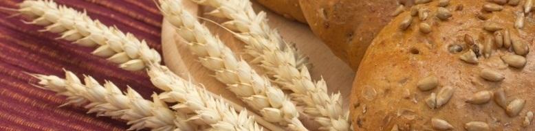 grøntsager med højt fiberindhold
